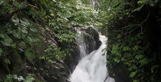Charming Waterfall, Canyoning Bali